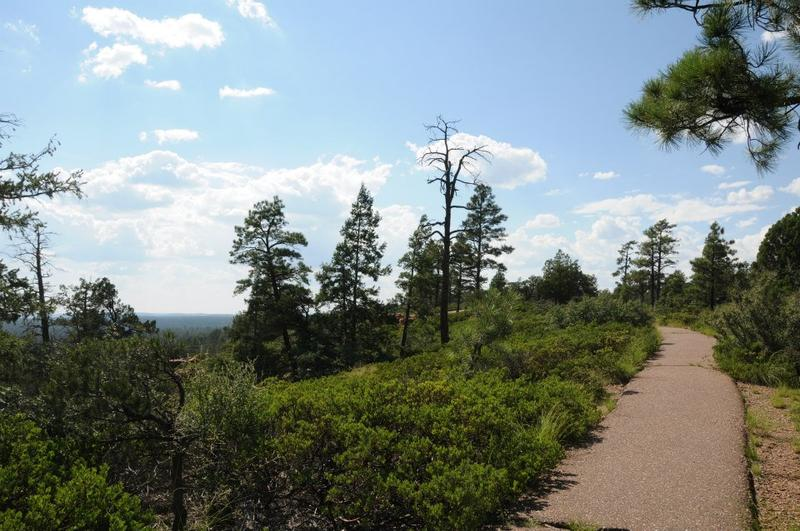 Mogollon Rim Trail hike is less than 1 mile from our cabin.