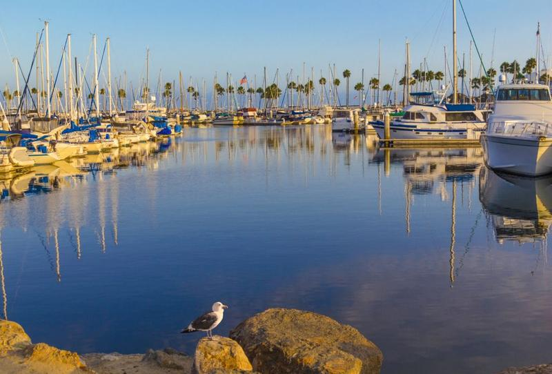 Boats at the harbor in Long Beach